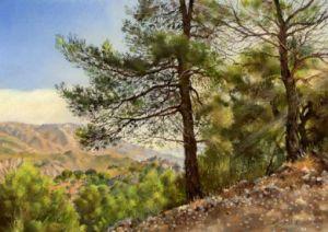 Guajar Pines